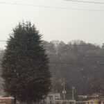 雪がチラチラ
